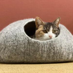 Katzenhühle grau scout handmade wolle